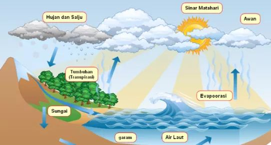 Daur-Hidrologi-Air