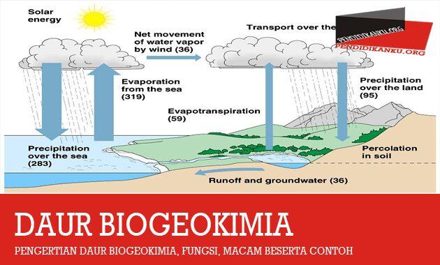 pengertian-daur-biogeokimia