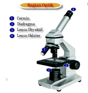 Bagian-Optik-Mikroskop