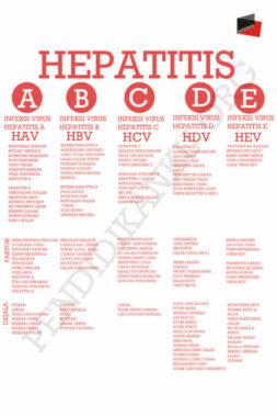 jenis-hepatitis-pendidikanku.psd
