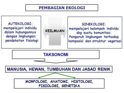 pembagian-ekologi