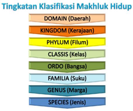klasifikasi-makhluk-hidup