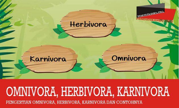 omnivora-herbivora-karnivora