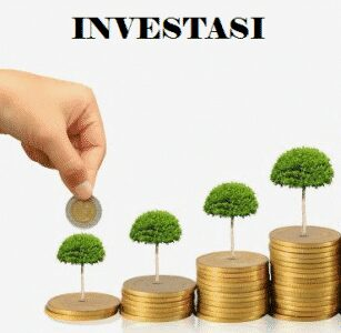 Fungsi-Investasi