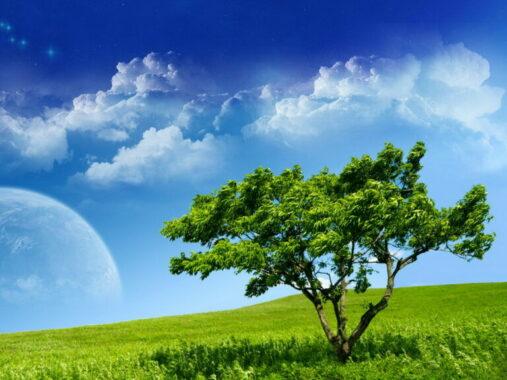 Jenis-Lingkungan-Hidup