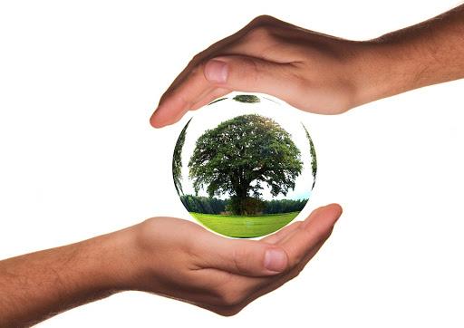 Manfaat-Lingkungan-Hidup