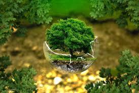 Pengertian-Lingkungan-Hidup-Menurut-Para-Ahli